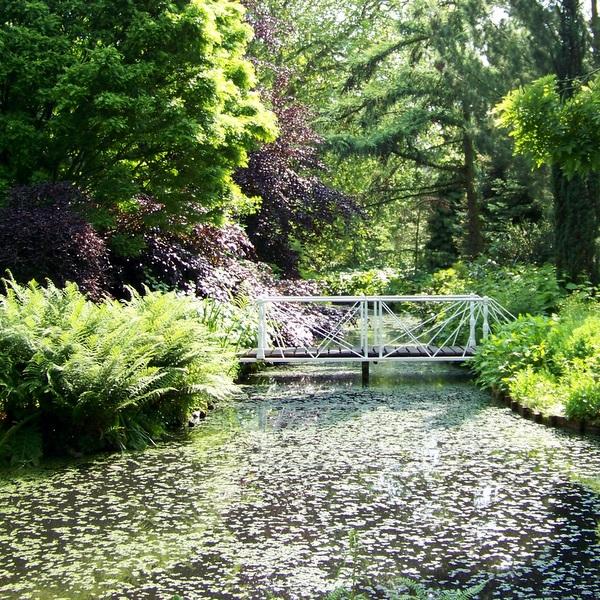 Botanische tuin kralingen archieven marjelle blogt for De tuin kralingen