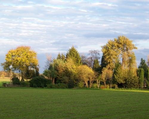 Herfst in Moerenburg